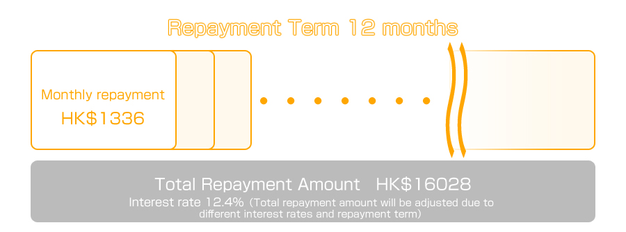 Interest rate 12.4%,Repayment Term 12 months